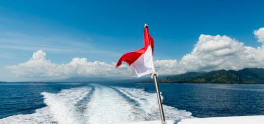 Speed boat antifouling