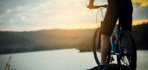gosko kolo, kolesarski servis